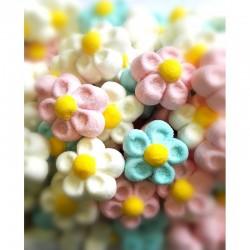 Fleurs couleurs assorties Marshmallow