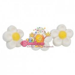 Fleurs Blanches Marshmallow