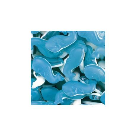 Baleine bleue bi colore