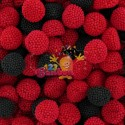 Mûres rouges et noires 200g * Destockage *